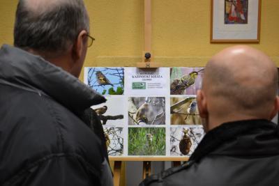 Ptaki wokół nas - wystawa fotografii K. Kiejzy